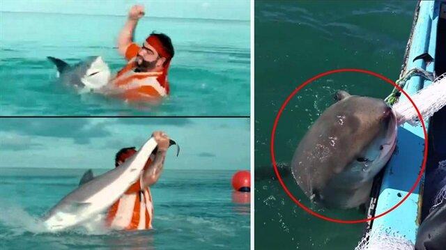Recep İvedik sahnesi gerçek oldu: Balıkları vermemek için köpek balığıyla kavga ettiler