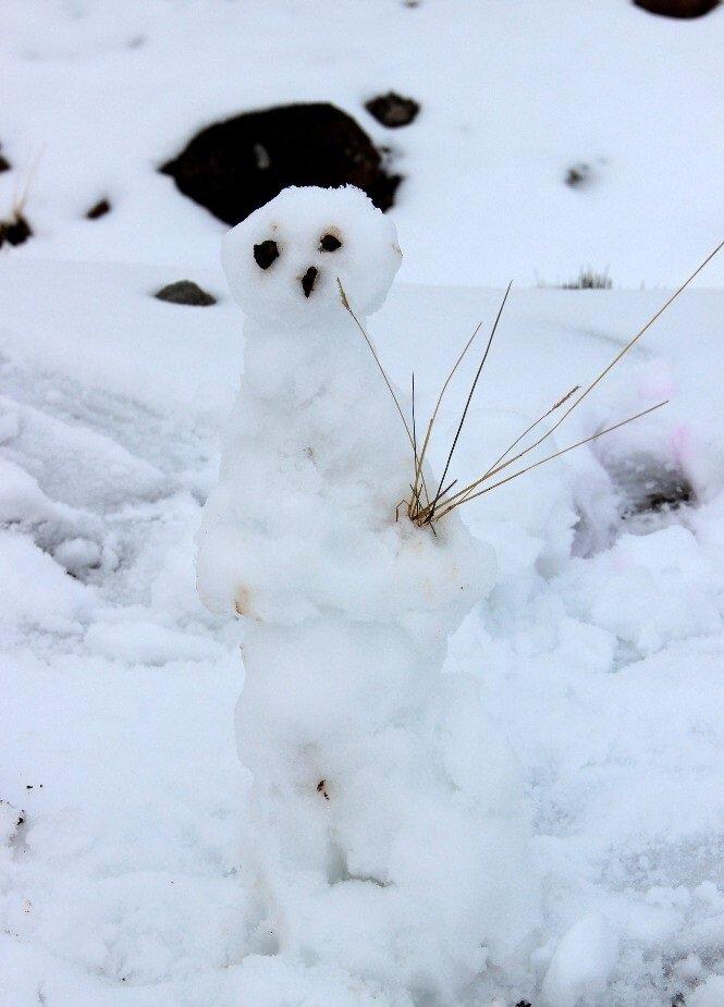 2017 yılının ilk kardan adamı Erzurum'da yapıldı.