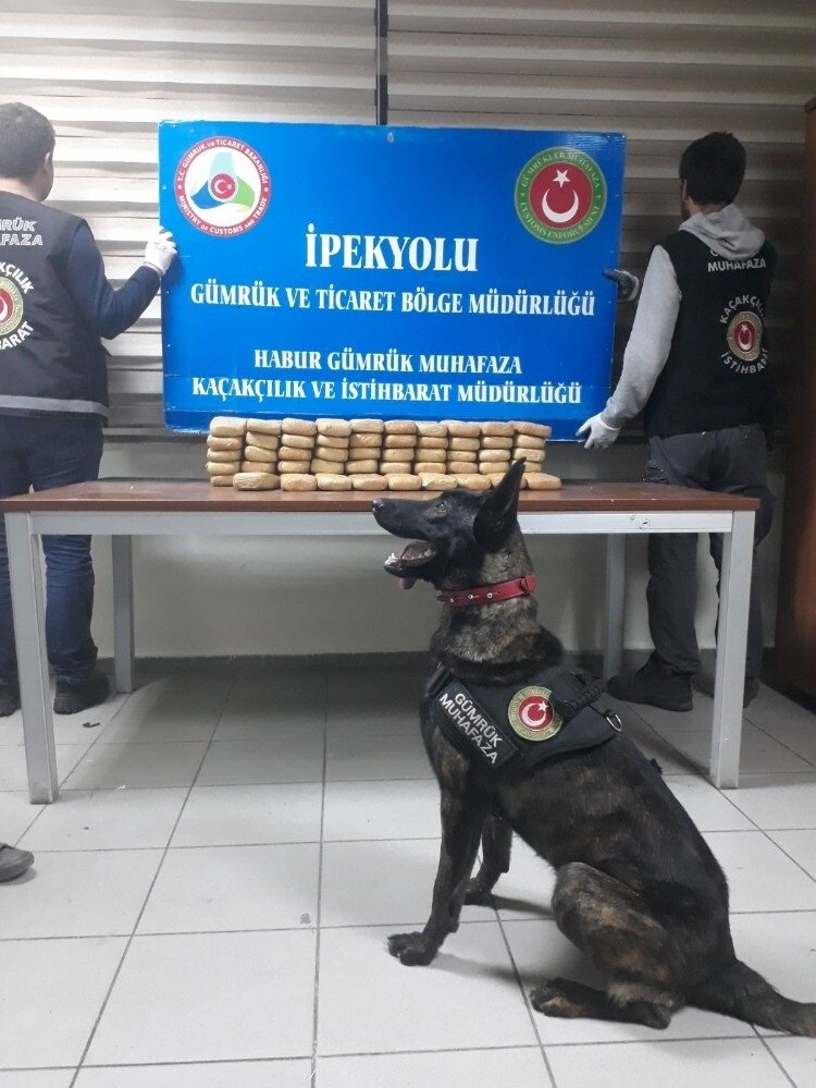 Narkotik dedektör köpeği İda valize tepki verdi.