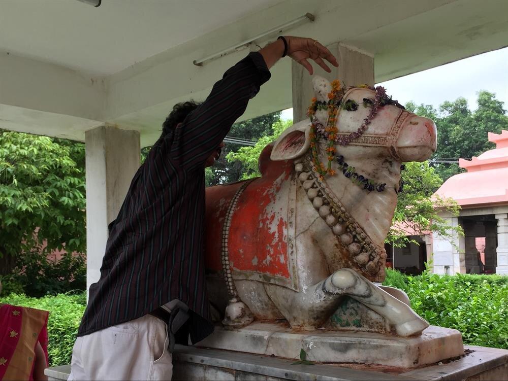Shree Tapınağı'nda tanrısına ibadet eden bir Hintli. (Fotoğraf: Ahmet Sücüllülü)
