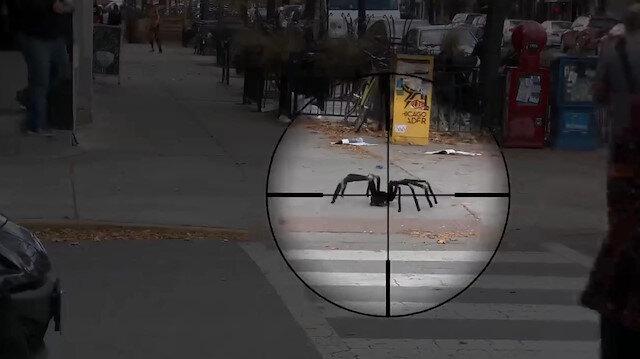 İlginç örümcek şakası çocuğun aklını başından aldı
