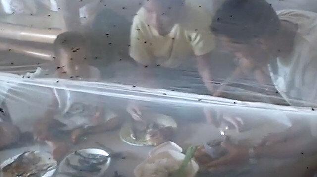 Sinek istilasından dolayı 'cibinlik' altında yemek yiyorlar