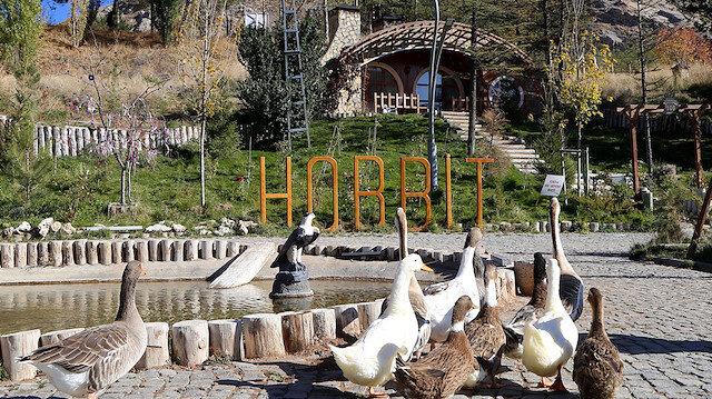 """Sivas'ın """"Hobbit evleri""""nde sonbahar güzelliği"""