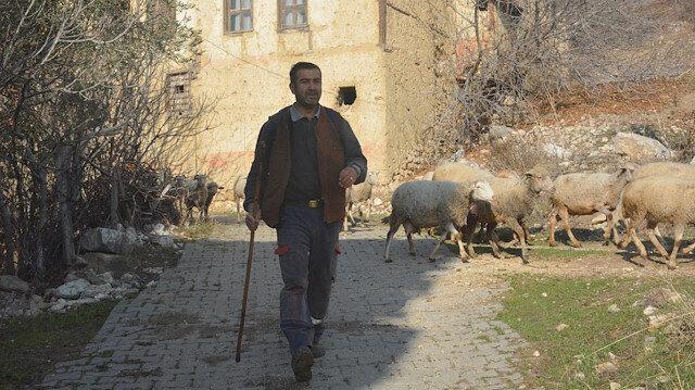 Yöneticiliği bırakıp, koronavirüsten kaçtı: 9 aydır köyde hayvancılık yapıyor