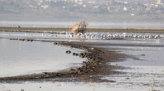 Büyükçekmece Gölü 13 yılın en düşük seviyesini gördü