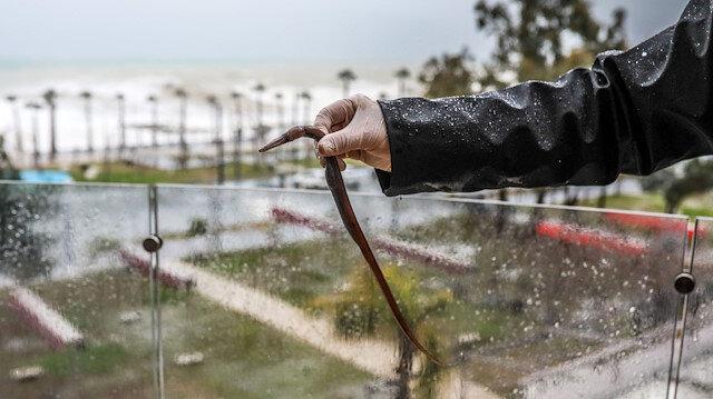 Antalya'da denizdeki balık fırtınanın etkisiyle evin balkonuna uçtu