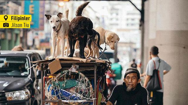 'Dünyadan fotoğraflar'da bugün: Sokak fotoğrafçılığı