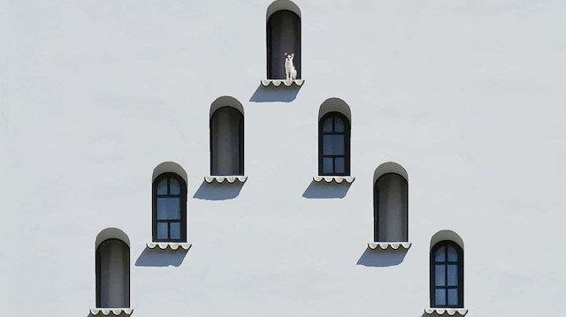 Yapıların dünyaya açılan gözleri, pencereler...