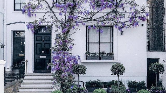 Gurme başkenti: Londra 🌺