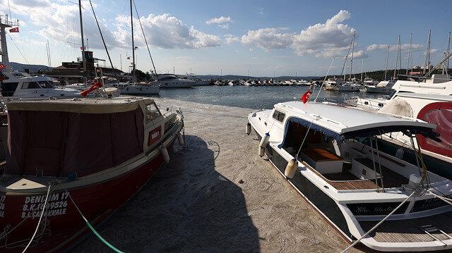 Müsilaj Bursa ve Çanakkale sahillerine de yayıldı