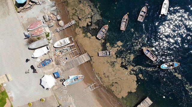 Marmara ne zaman müsilajdan temizlenir?