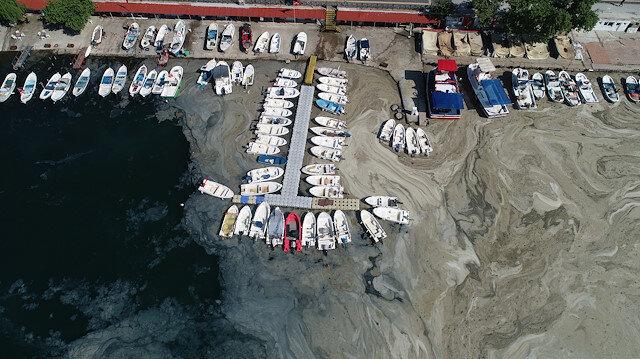 Lodos müsilajı geri getirdi: Kıyılar tekrar kaplandı