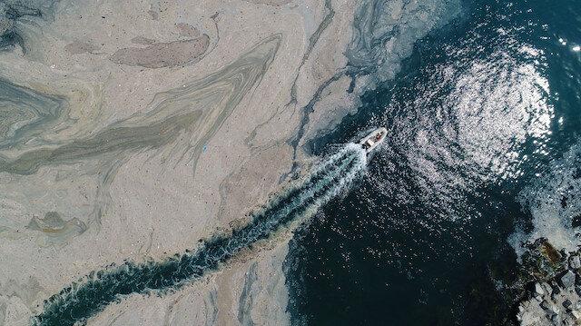 İstanbul'da deniz salyası istilası devam ediyor