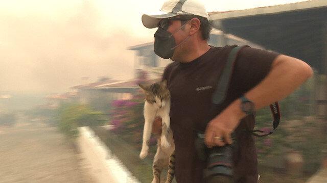 Evin balkonunda mahsur kalan kedi gazeteciler tarafından kurtarıldı